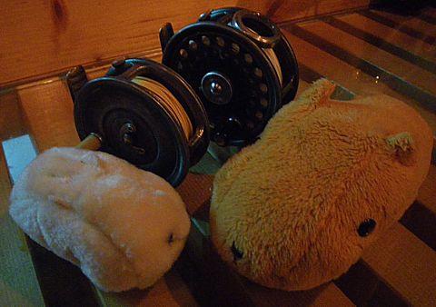 091101 Hardy&Capybara ~1.jpg