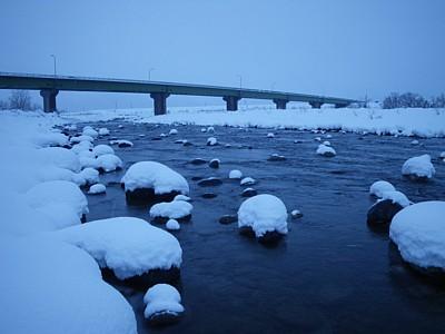 100101 Playing in Snow ~1.jpg