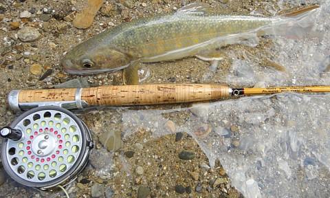 110814 Fishing.jpg