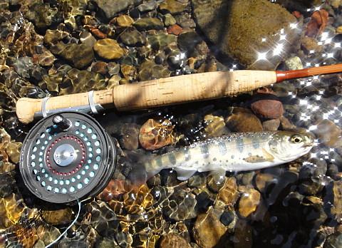 140412 Fishing ~1.jpg