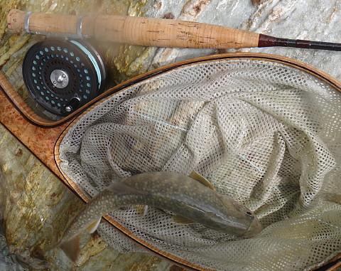 140913 Fishing ~1.jpg
