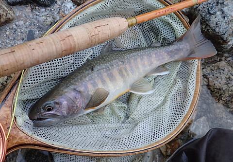 140927 Fishing ~4.jpg