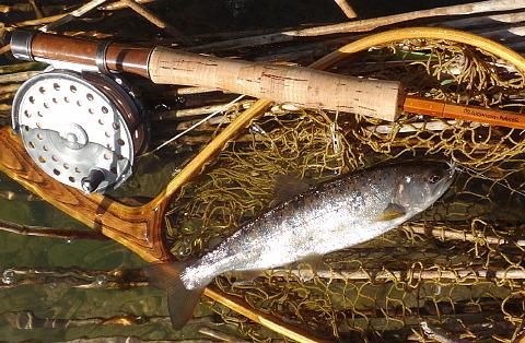 150727 Fishing ~1.jpg