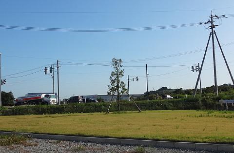 150929 Shirakashi ~0.jpg