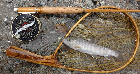 170715 Fishing.jpg