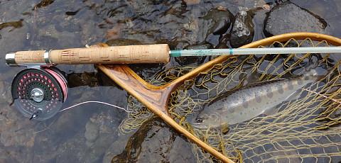 190421 Fishing ~1.jpg