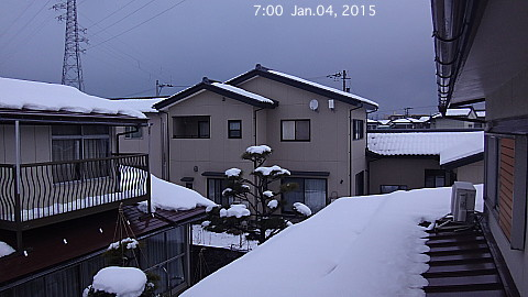 SnowedScene 150104-0700.jpg