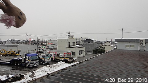 SnowingScene101229-1420.jpg