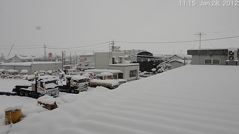 SnowingScene 120128-1115.jpg