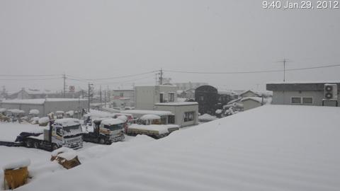 SnowingScene 120129-0940.jpg