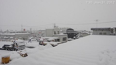 SnowingScene 120131-0730.jpg