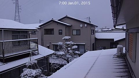 SnowingScene 150101-0700.jpg