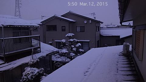 SnowingScene 150312-0550.jpg